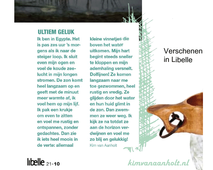 over dolfijnen in libelle